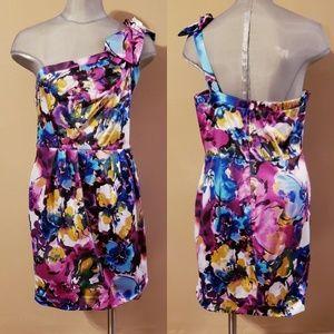 Beautiful Bisou Bisou dress